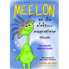 Meelon en die elektromagnetiese storm