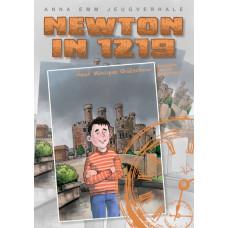 Newton in 1219